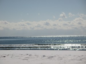 鉢ヶ崎海1