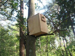 巣箱作り9